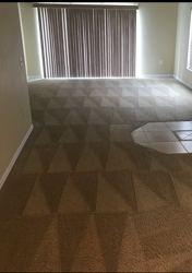 steamone carpet